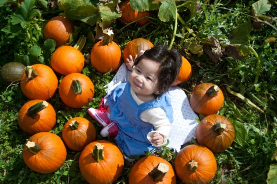 Scarlett at the Pumpkin Patch