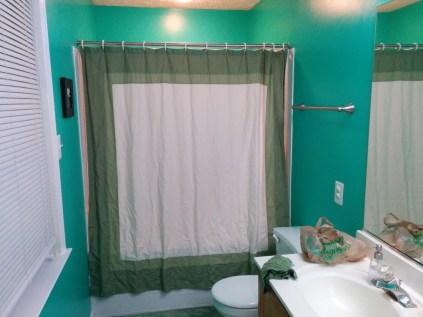 Bathroom New Paint-51