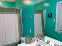 Bathroom New Paint-53