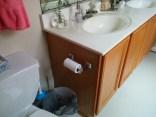 Old Bathroom Paint-6