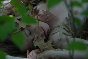 A Leafy Nap
