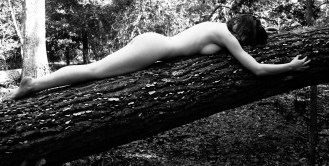Rough Bed