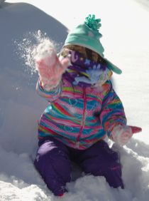 Feb Snowmageddon - 2016-01-24--024