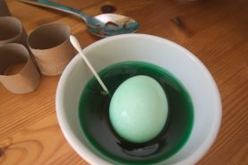The green egg