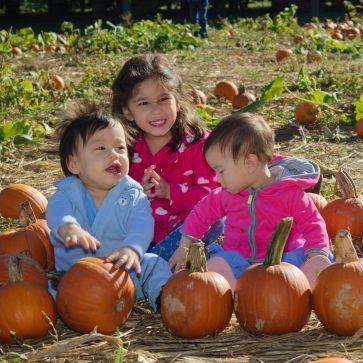Pumpkin Patch Kids 2016