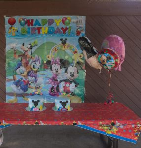Sam and Stella 1st Bday - 2016-11-13T12:49:57 - 003
