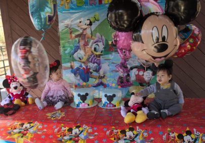 Sam and Stella 1st Bday - 2016-11-13T12:59:34 - 039