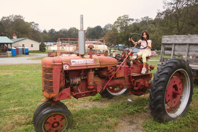 Tractor and Horse - 2018-10-07T09:19:18 - 026