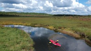 Cold Stream Kayaking