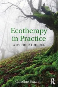 ecotherapy in practice: a buddhist model