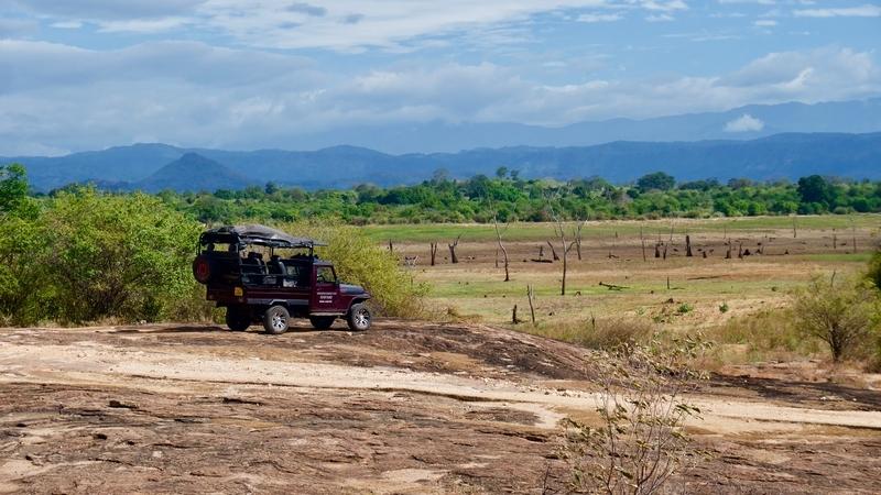 Morningside Safari Udawalawe