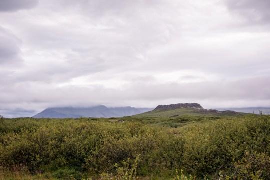 Rejse, Rejsefotografi, Island, Landskab, Iceland, Travel,