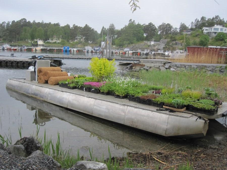 Privat trädgård, Stockholms skärgård