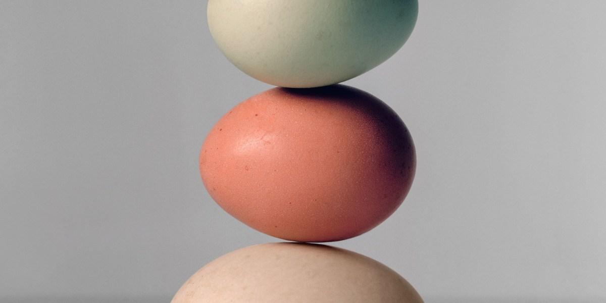 pastured eggs vogue photo via derek