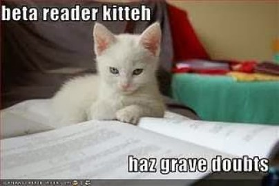 Beta Reader Kitteh