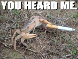 Scary crab