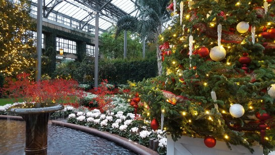 A Visit to Longwood Gardens Botanical Gardens for their Christmas Display