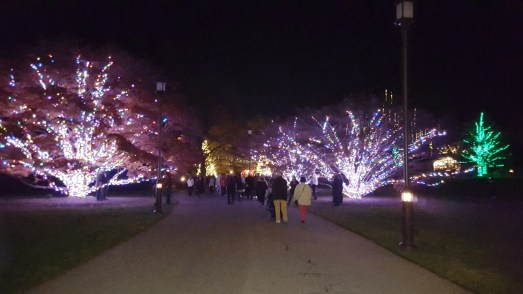 A Visit to Longwood Gardens to see their Christmas Display