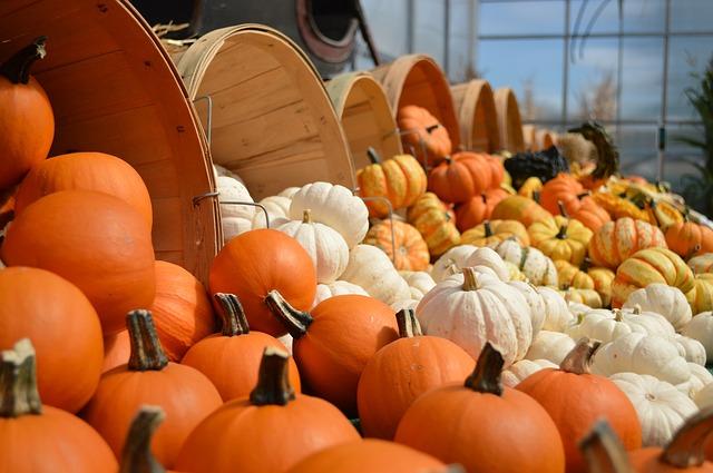 Top 25 DIY Fall Decorating Ideas