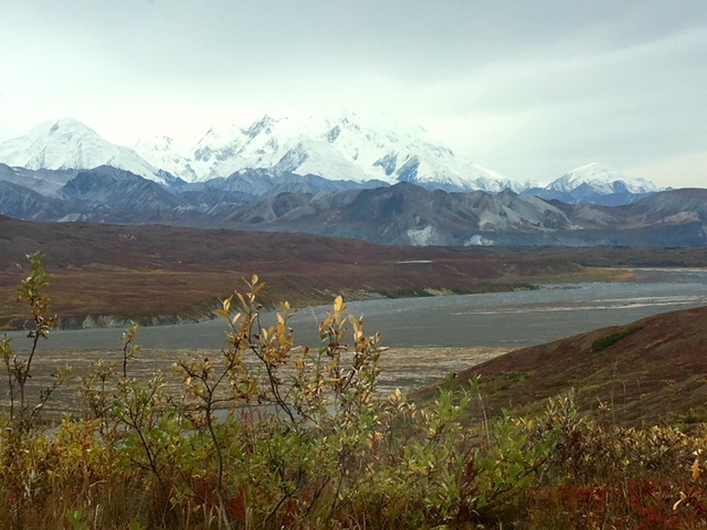 View of Denali in the fall