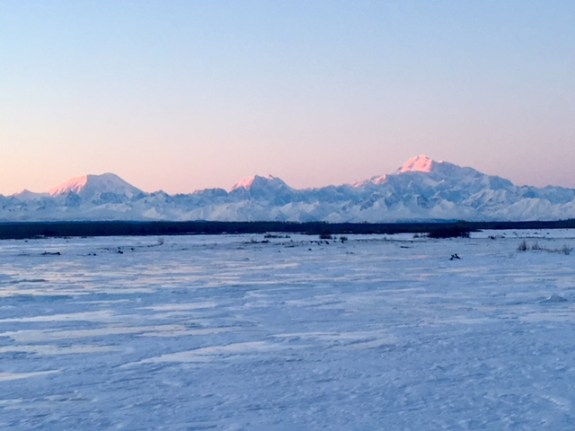 View of Denali at dusk with Alpenglow (pink shadows)