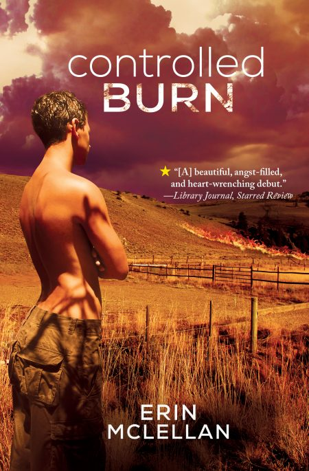 Cover of Controlled Burn by Erin McLellan with a man standing in a field with fire in background