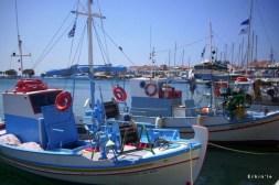 samos balıkçıları