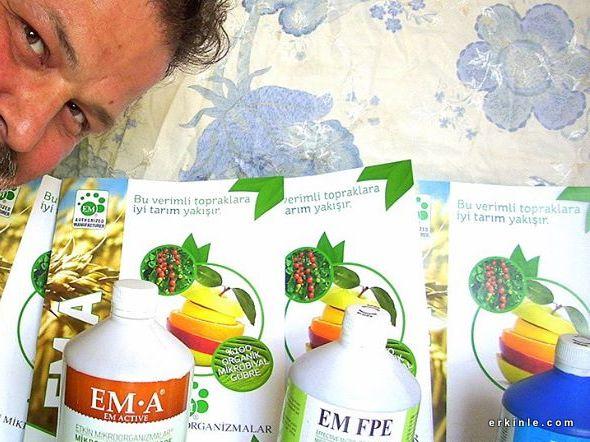 EM yararlı bakteriler
