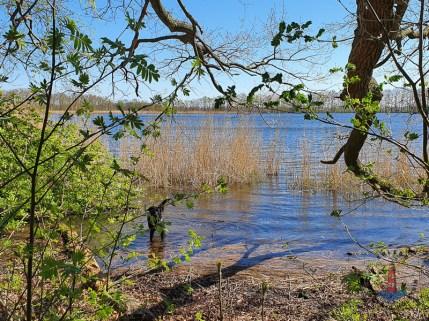 Aussicht und Wandern am Bokeler See, Mühlensee
