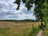 Wanderweg an der Alsterquelle