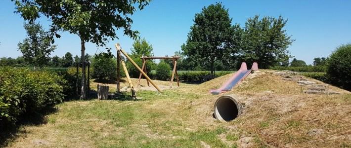 Vogelnestschaukel mit Holz aus Gemeindewald restauriert!