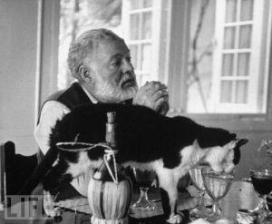 Ernest Hemingway Gato na chuva