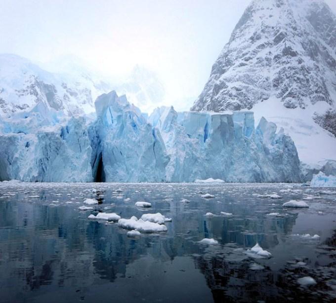 Estinzione globale: sull'orlo della sesta