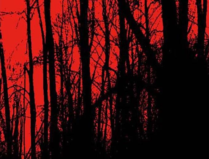 la foresta assassina