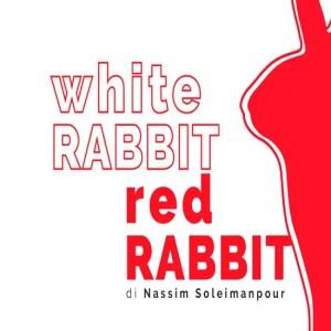 White Rabbit Red Rabbit al Piccolo Bellini