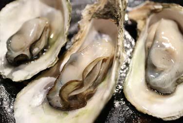 Wiener Auster: Sexstellung für Gelenkige