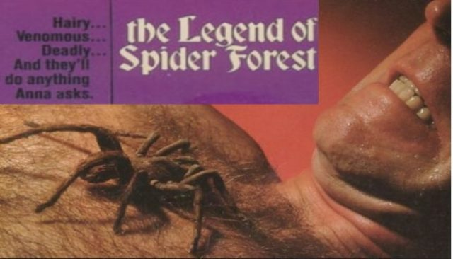 The Legend of Spider Forest (1971) watch online