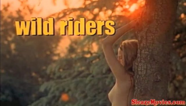 Wild Riders (1971) watch online