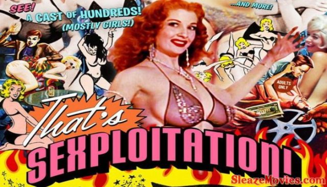 That's Sexploitation ! (2013) watch online