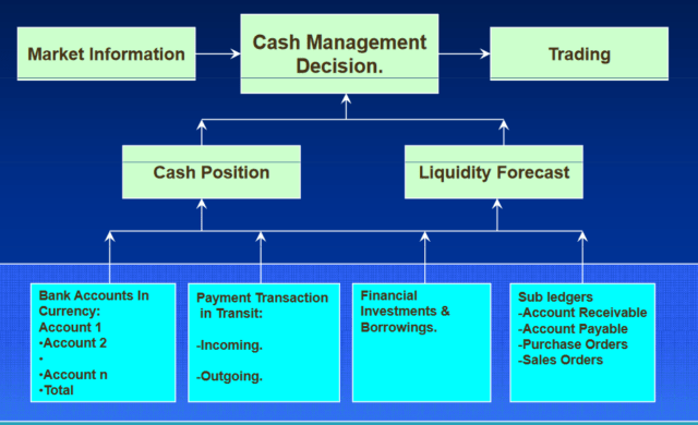 Benefits of Cash Management in SAP ERP