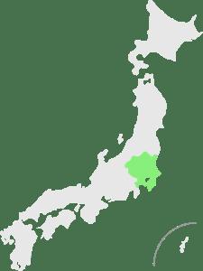 Regionale treinpassen in Kanto