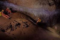 Cavenauts