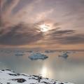 Groenlandia costa