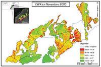 Los datos de satélite para el riego