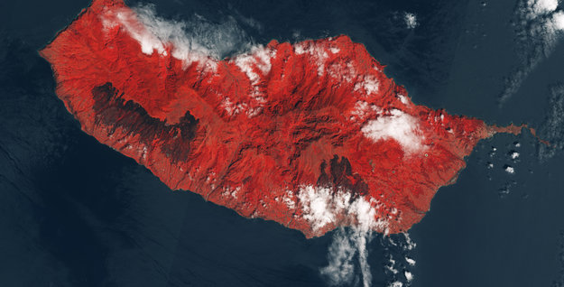 Fire-scarred_Madeira_large.jpg