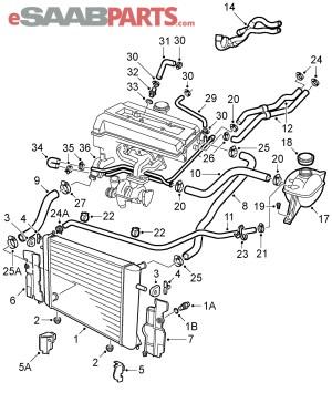 [55558952] SAAB Hose  Water Pump Outlet (Elbow)  Genuine Saab Parts from eSaabParts