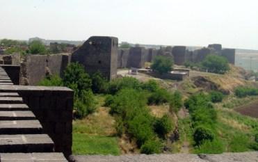 Diyarba5
