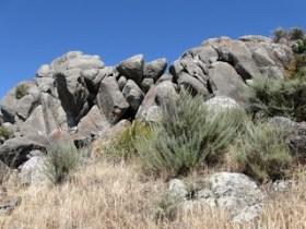 california11