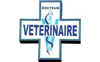 Dr Laure Le BAIL – vétérinaire employeur
