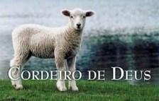 o que é cordeiro de deus, jesus cristo, salvador, sacrifício